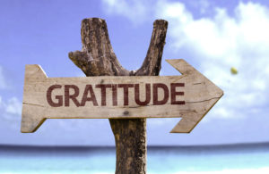 Gratitude Sara Schroepfer